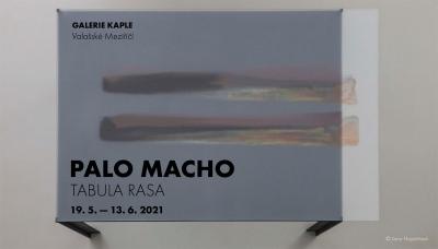 Palo Macho
