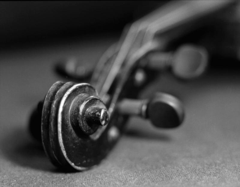 Koncert žáků houslové třídy ZUŠ Alfréda Radoka